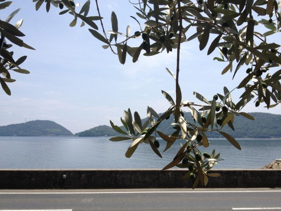 小豆島人目線の写真