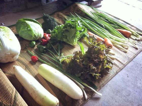 小豆島の野菜たち